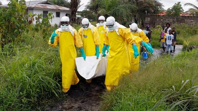 Helfer in Schutzkleidung tragen in einem weissen Tuch ein totes Ebola-Opfer aus einem Dorf.