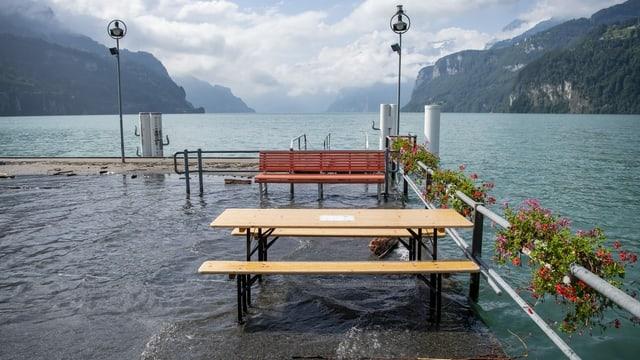 Überschwemmtes Ufer in Brunnen (SZ)