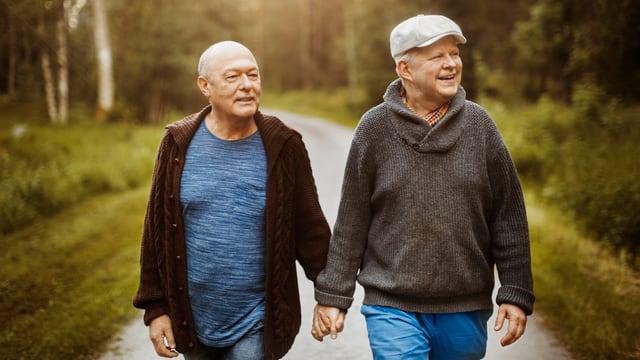 Zwei Männer spazieren Hand-in-Hand auf einem Waldweg.