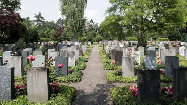 Symbolbild: Gräberfeld auf dem Friedhof Sihlfeld in Zürich.