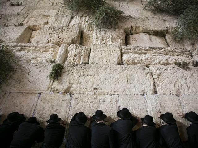 Männer beten an der Klagemauer