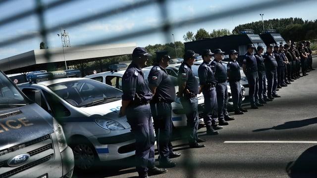 Polizisten stehen in Reih und Glied, dahinter Polizeiautos.