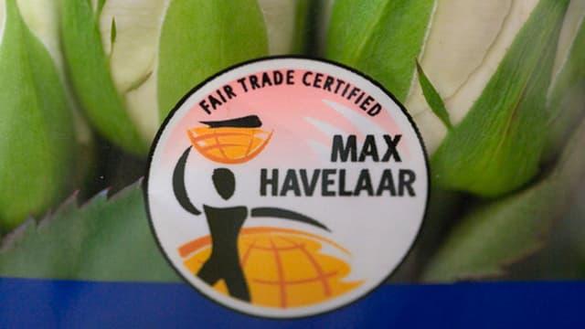 Max Havelaar Logo