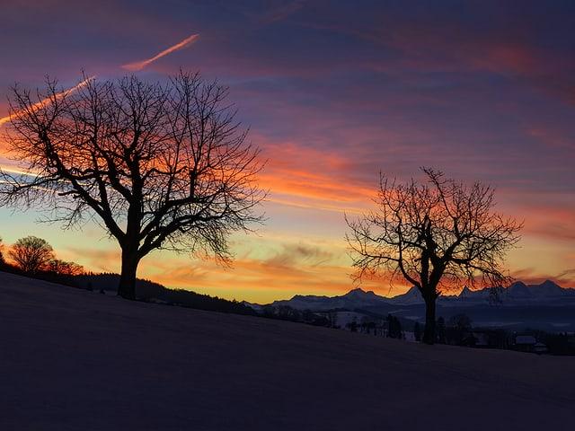 Landschaft in der Dämmerung. Konturen von Wiesen, Bäumen und Bergketten in schwarz. Dahinter der farbige Himmel, aber noch ohne Sonne.