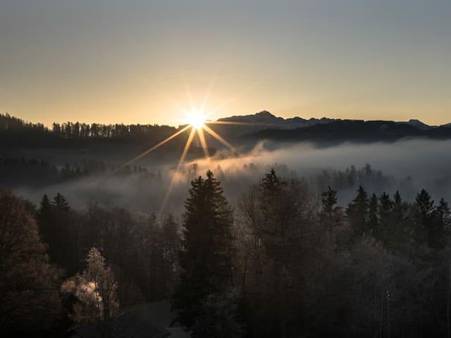 Die Sonne geht am wolkenlosem Himmel neben dem Säntis auf.