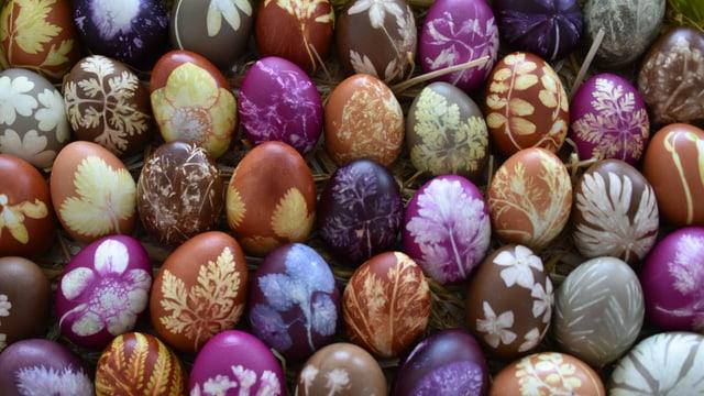 Farbige Eier