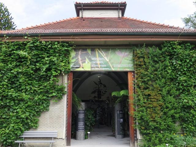 Eingang zum Museum ist überwuchert von Efeu