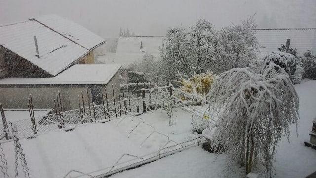 Schneebedeckte Wiesen und Häuser in Thun.