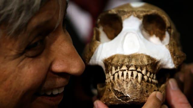 Ein Professor des Forscherteams präsentiert eine Rekonstruktion des Schädels des Homo naledi.