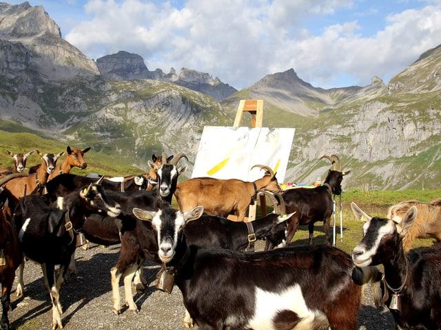 Ziegenherde bei Staffelei in den Bergen