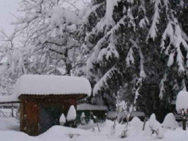Schnee am 5. März 2006 in Wittenbach SG.
