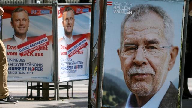 Plakate von Norbert Hofer und Alexander Van der Bellen nebeneinander.