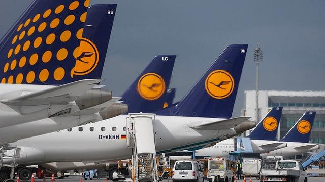 Heckflügel von Lufthansa-Maschinen
