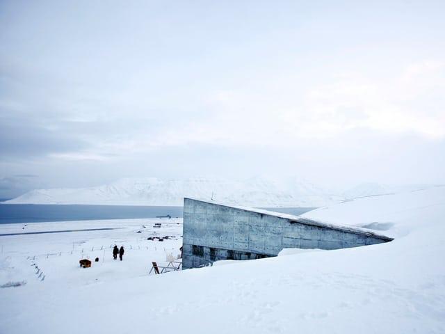 Knapp einen Kilometer von Longyearbyen entfernt liegt unscheinbar die Schatzkammer: Von aussen ist nur der betonierte, schmale Eingang sichtbar, der aus dem schneebedeckten Berg zu wachsen s