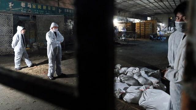 Im Geflügelmarkt Huuhai in Shanghai wurde am Morgen damit begonnen, Hühner, Enten, Gänse und Tauben zu töten.