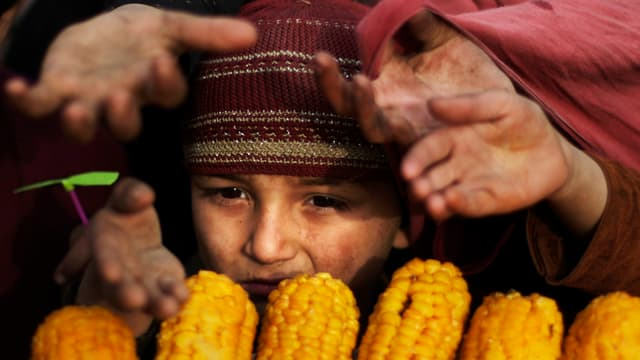 Junge und andere Menschen betteln um Maiskolben.