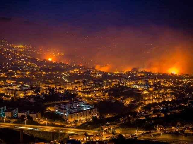 Waldbrände auf Madeira.