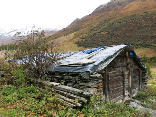 Stall mit leckem Dach.