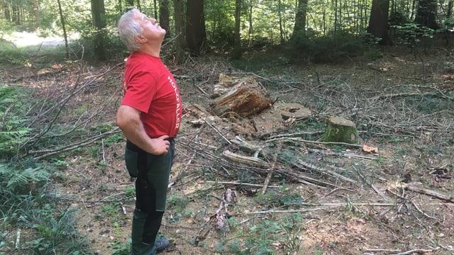 Mann in rotem T-Shirt im Wald, guckt in die Luft.