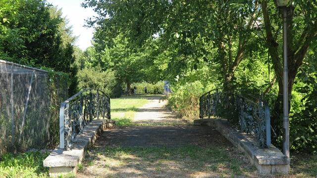 Brücke mit Weg im Park
