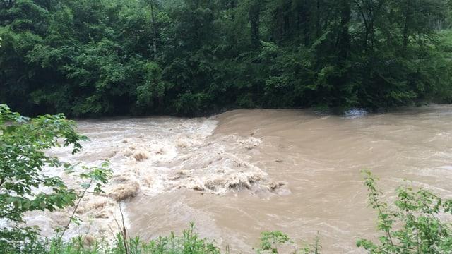 Die Töss führte am Donnerstagmorgen Hochwasser.