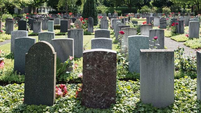 Gräberfeld auf dem Friedhof Sihlfeld