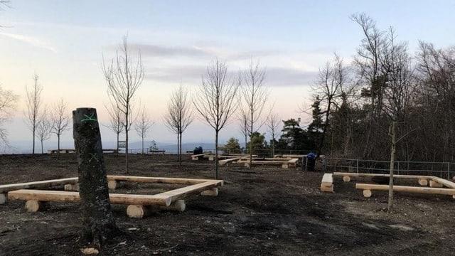 Blick auf einen Rastplatz mit Bänken, aber jetzt ohne Bäume.