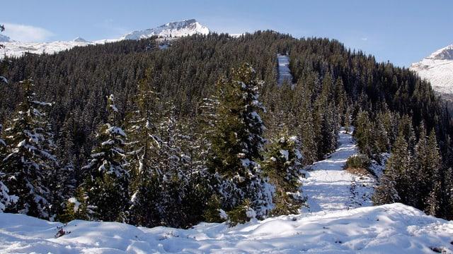 Audio «Bauern wehrten sich gegen Schäden durch Skisport» abspielen