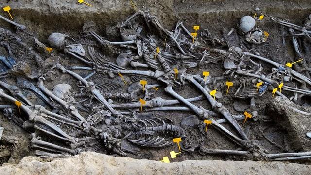 Massengrab mit Skeletten.