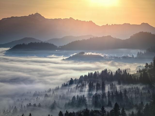 Blick auf Bergen, davor das Nebelmeer bei Sonnenaufgang