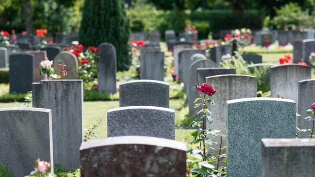 Blick die Grabreihen auf einem Friedhof