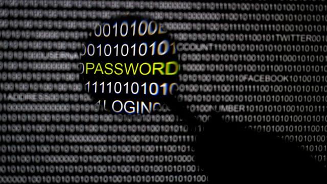 Ein Bildschirm voller Einsen und Nullen und eine Hand mit einer Lupe vergrössert die Stelle mit dem Passwort.