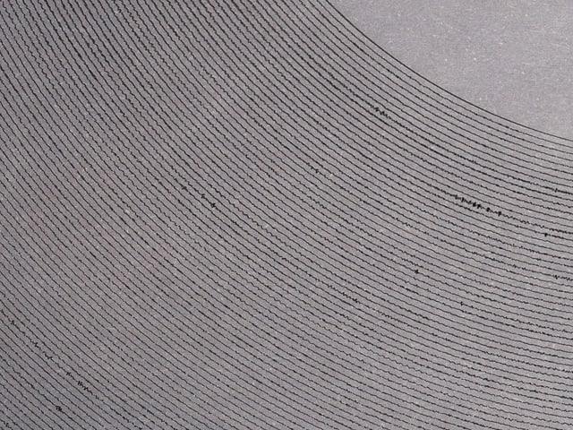 Eine Schallplatte, die aus Papier gemacht wurde. Einzelne Rillen sind sichtbar.