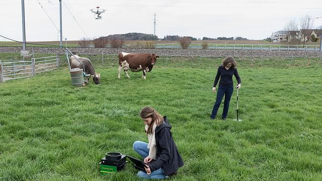 Zwei Frauen mit Messinstrumenten auf einer Weide mit zwei Kühen.