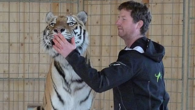 Remo Müller mit Tiger