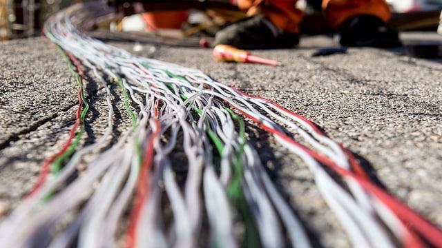 Cabels da fibra da vaider