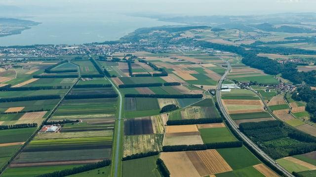 Luftaufnahme von Feldern in allen Braun- und Grüntönen bei Yverdon.