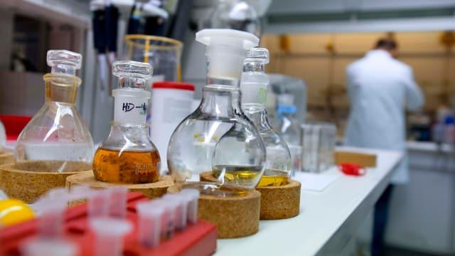 Mit verschiednen Flüssigkeiten gefüllte Kolben in einem Labor.