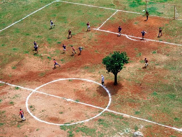 Spärlicher Rasen, rote Erde, fast im Mittelkreis ein Baum: Fussblallplatz in Sao Paulo.