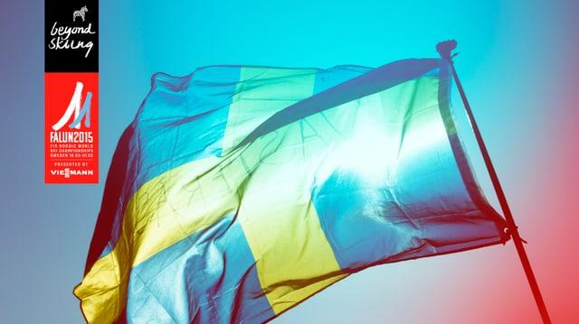 Bandiera da la Svezia.