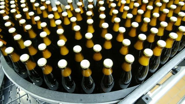 Abgefüllte Bierflaschen auf Förderband