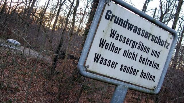 Blick in den Hardwald bei Muttenz auf die Trinkwasserfassung