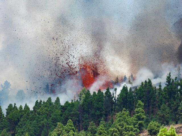 Auf der spanischen Kanareninsel La Palma ist im Bereich der Cumbre Vieja ein Vulkan ausgebrochen.
