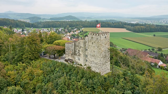 Luftaufnahme Schloss Habsburg