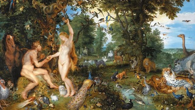 Video «Und ewig lockt der Paradiesgarten!» abspielen