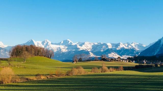 Blick von Thierachern auf die verschneiten Berge des Berner Oberlandes.