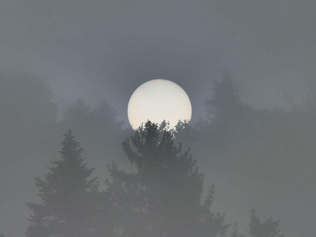 Sonne hinter Nebel