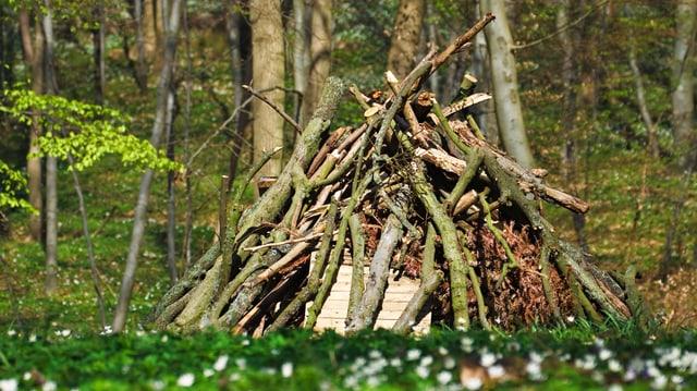 Holz-Haufen für Feuer
