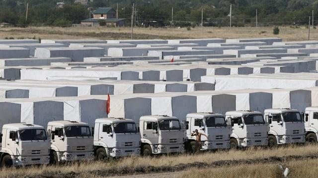 Zahlreiche Lastwagen in Reih und Glied