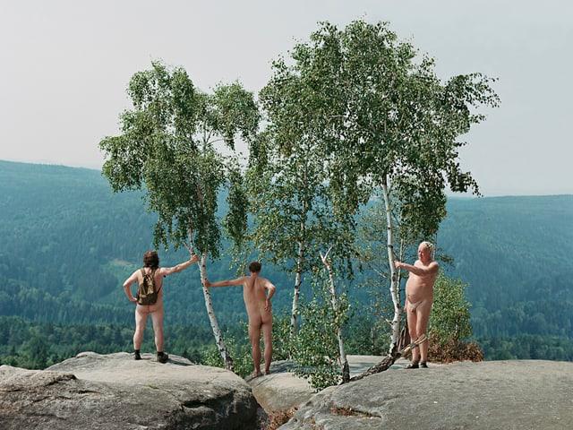 Drei Nacktwanderer stehen unter einer Birke.